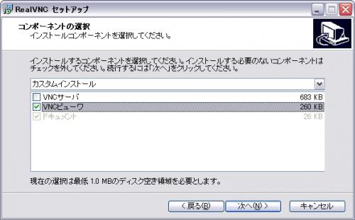 RealVNC インストール時にサーバをインストールするかどうか尋ねられる